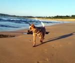 Zeke beach e